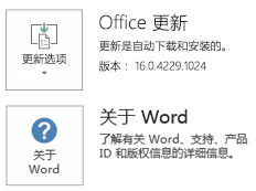 使用即点即用技术安装 Office 时,应用程序和更新信息如下所示。