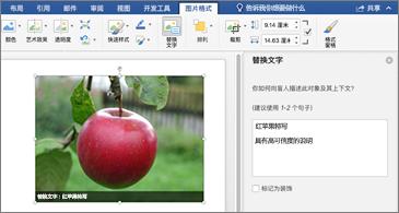 Word 文档,右侧有图像和替换文字窗格