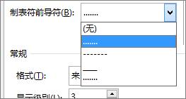将目录中的制表符前导符更改为短划线或圆点。