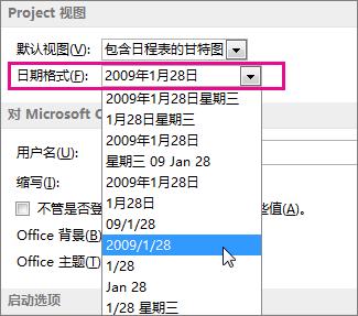 """""""项目选项""""对话框中的日期格式列表"""