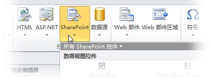 SharePoint Designer 2010 功能区上的 SharePoint 菜单