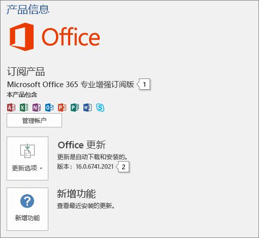 """""""帐户""""页面的屏幕截图,显示 Office 产品名和完整的版本号"""