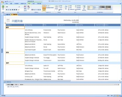 在 Office Access 2007 中编辑报表