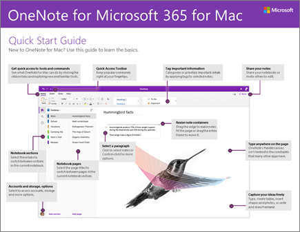 OneNote 2016 for Mac 快速入门指南