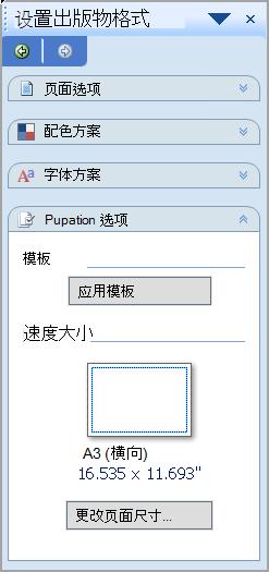 设置出版物格式