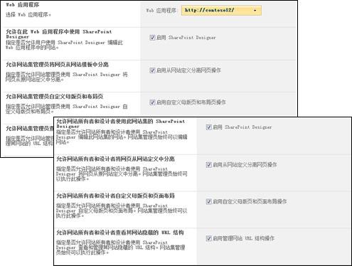 SharePoint Designer 设置页