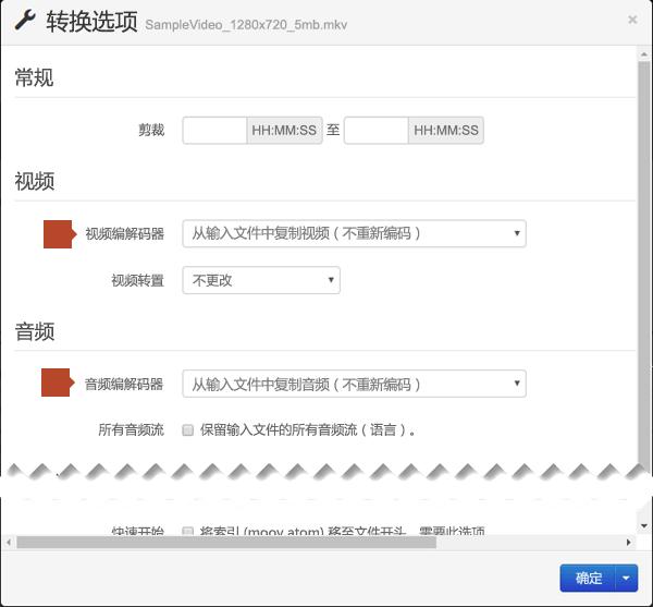 """""""转换选项""""对话框中提供""""视频编解码器""""和""""音频编解码器""""选项。"""