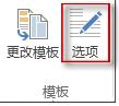 Publisher 2013 中的模板选项按钮