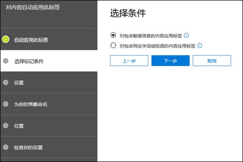 """自动应用标签的""""选择条件""""页面"""