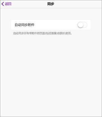 在 iPad OneNote 设置中关闭自动同步。