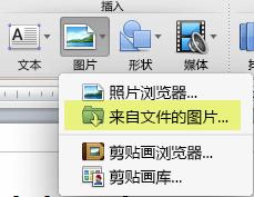 """在功能区""""开始""""选项卡的""""插入""""下,单击""""图片"""">""""来自文件的图片""""。"""