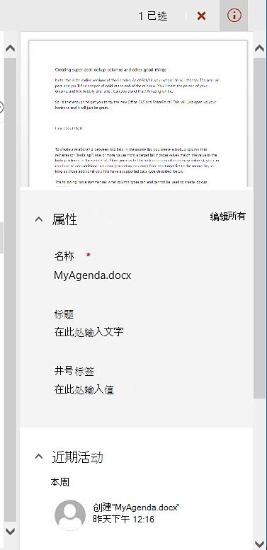 单个文件所选的详细信息窗格。