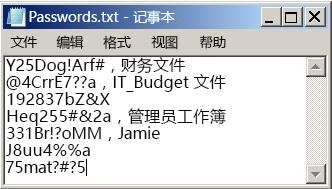 记事本文件中的密码列表