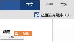 Word Online 显示其他作者在文档中进行工作的位置