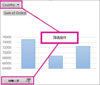 显示筛选控件的数据透视图
