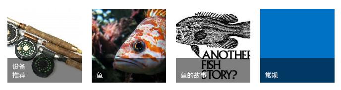 四个类别图块,每个图块包含一张钓鱼图像和标题