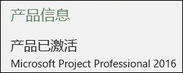 产品信息 - Project Professional 2016