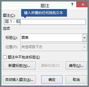 为标签字段中的题注键入任何可选自定义文本。