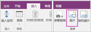 "OneNote 2016 中的""插入图片""按钮的屏幕截图。"