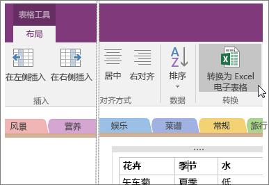 "OneNote 2016 中的""转换为 Excel 电子表格""按钮的屏幕截图。"