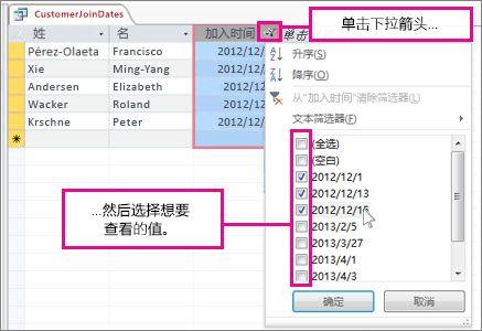 在桌面数据库中筛选查询列。