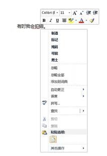 拼写和语法检查器的右键菜单