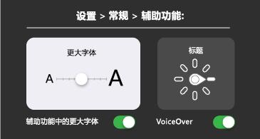 常规辅助功能:大型文字和 VoiceOver 设置