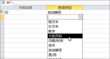 """""""大数""""突出显示的数据类型列表"""