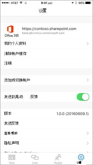 显示 SharePoint 应用程序设置选项卡的部分的屏幕截图