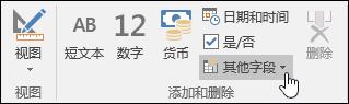 """""""字段""""功能区选项卡上的""""添加和删除""""组屏幕截图。"""