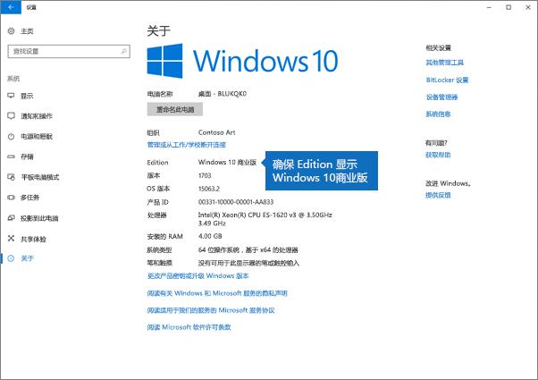 确认 Windows 版本为 Windows 10 商业版。