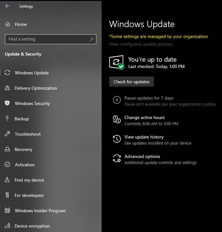 Windows Update will show if Build 18947 is pending