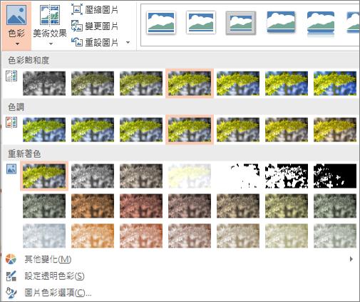 色彩效果選項