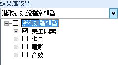 在 [類型] 方塊,選取搜尋結果要包含的媒體類型。