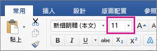 [常用] 索引標籤上醒目提示 [字型大小] 方塊