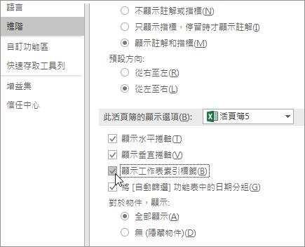 Excel 選項中的顯示工作表索引標籤
