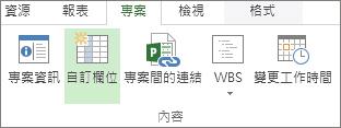 [專案] 索引標籤的自訂欄位命令
