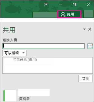 Windows 版 Excel 2016 的 [共用] 窗格