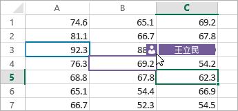 針對不同人員套用不同色彩的儲存格、放在人員圖示上的游標、顯示的名稱