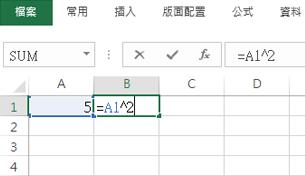 公式顯示在相鄰的儲存格中。