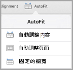 iPad 自動調整選項