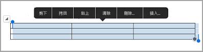 iPad 資料表命令列