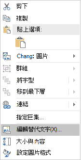Excel Win32 編輯替代文字] 功能表的圖像