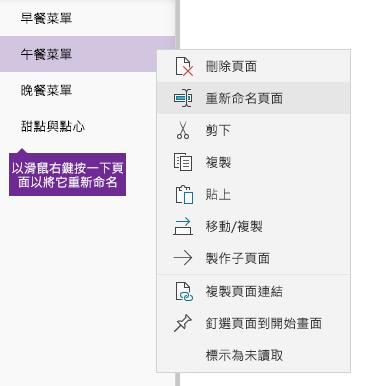 在 OneNote 中重新命名頁面的螢幕擷取畫面