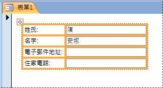 以堆疊式版面配置呈現欄位的表單