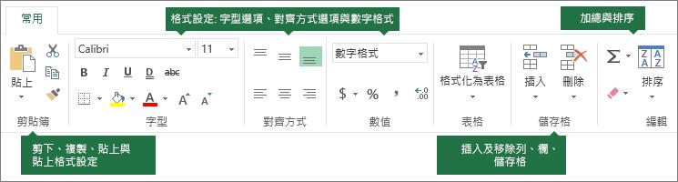 [常用] 索引標籤包含:[剪下]、[複製]、[貼上]、[貼上格式設定] 按鈕;[格式設定] 選項 (例如字型、對齊方式和數值格式);插入列/欄;加總及排序