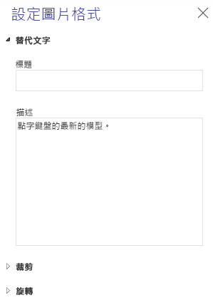 Word Online 圖片 [替代文字] 窗格