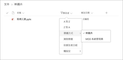 篩選] 窗格,含欄標題選項