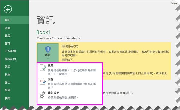 Excel 2016 的 Backstage 中的原則提示選項
