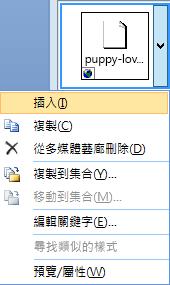 若要插入圖片,請以滑鼠右鍵按一下縮圖影像,然後選取 [插入]。